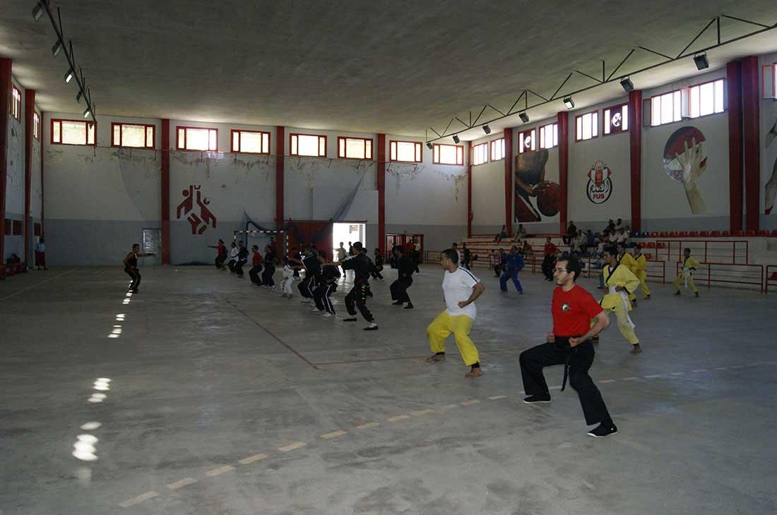 s-hung_gar-kung_fu-05